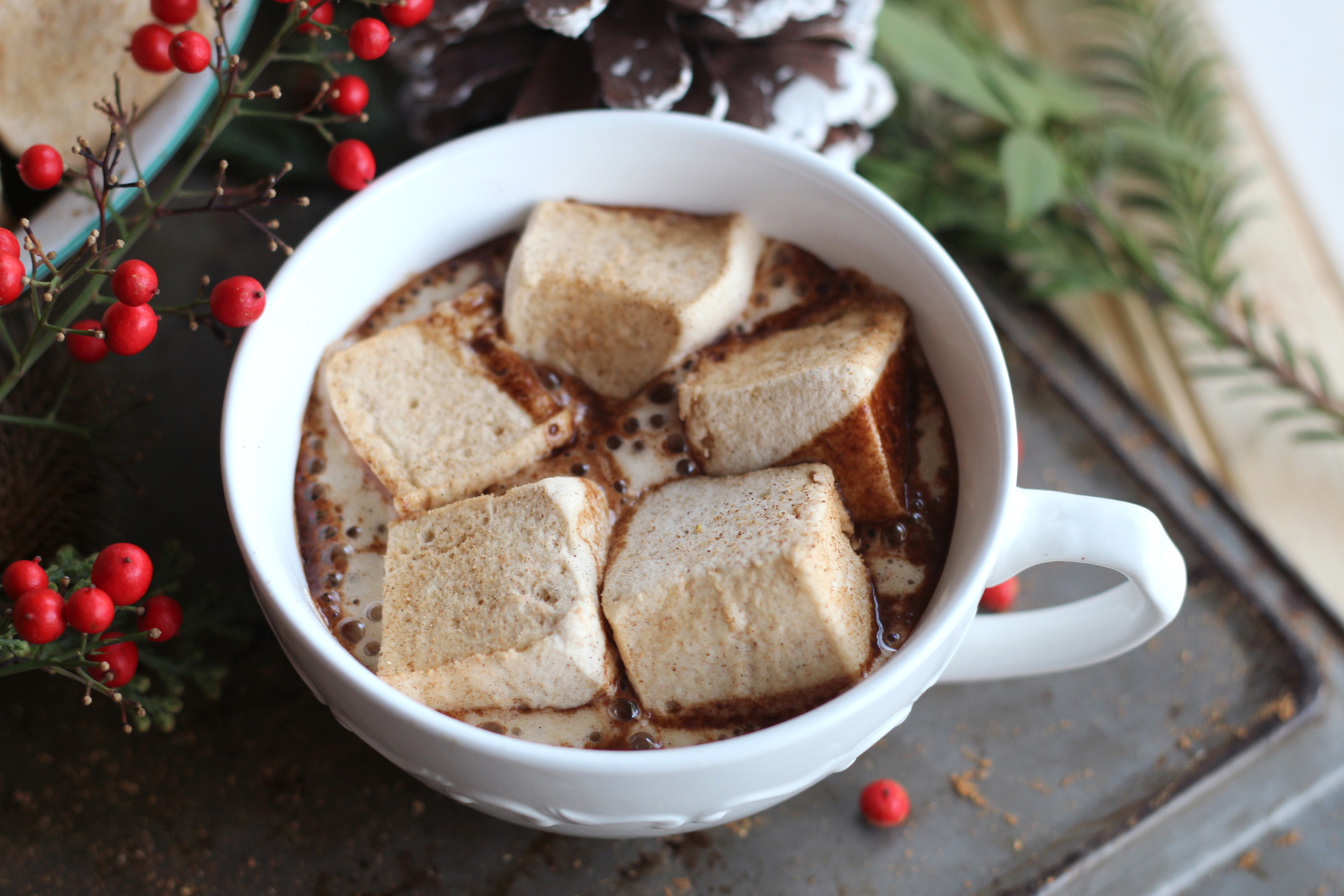 aaa-gingerbread marshmallows in hot chocolate
